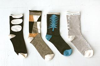 サルビア 秋の靴下