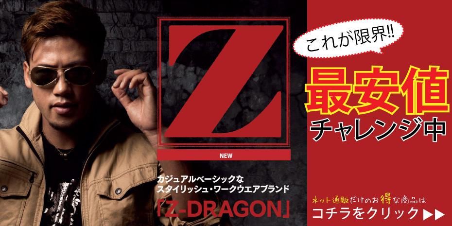 【ジードラゴン】最安値に挑戦!ネット通販だけのお得な商品
