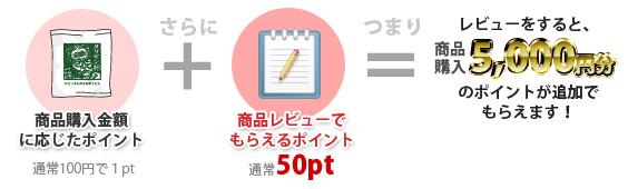 レビューポイントは通常50pt!購入ポイントに加算されます。
