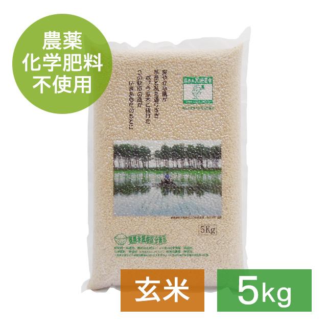 無農薬 あきたこまち 玄米 5kg