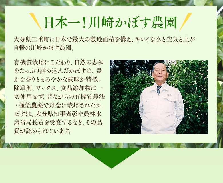 日本一!川崎かぼす農園〜大分県三重町に日本で最大の敷地面積を構え、キレイな水と空気と土が自慢の川崎かぼす農園。有機質栽培にこだわり、自然の恵みをたっぷり詰め込んだかぼすは、豊かな香りとまろやかな酸味が特徴。除草剤、ワックス、食品添加物は一切使用せず、昔ながらの有機質農法・極低農薬で丹念に栽培されたかぼすは、大分県知事表彰や農林水産省局長賞を受賞するなど、その品質が認められています。