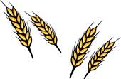 小麦フリー