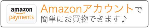 Amazonログインアンドペイメント