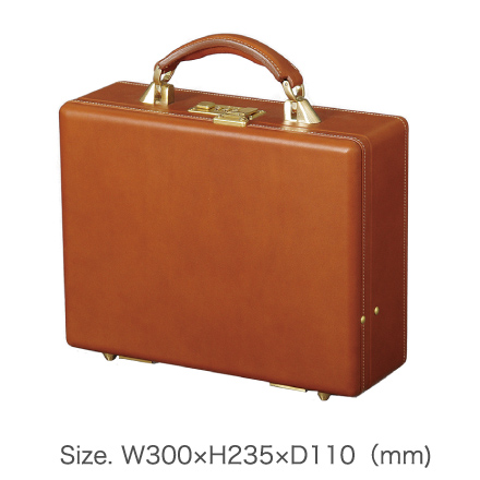 Size. W300×H235×D110(mm)