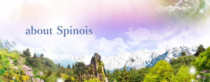 about Spinois