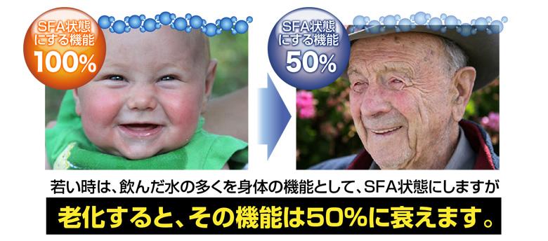老化すると、その機能は50%に衰えます。