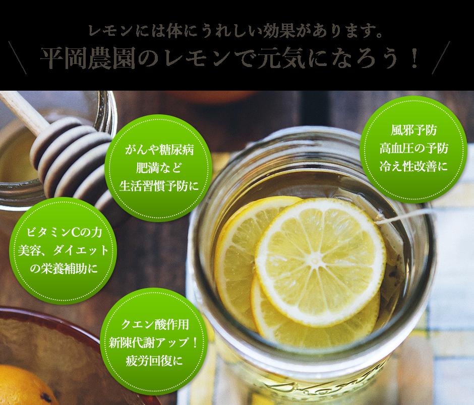 レモンには体にうれしい効果があります。平岡農園のレモンで元気になろう!