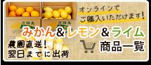 レモン&ライム商品一覧
