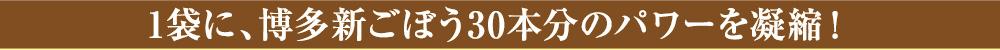 1袋に、博多新ごぼう30本分のパワーを凝縮!