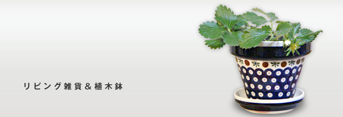 リビング雑貨&植木鉢
