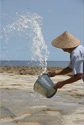 塩 徳之島の海水