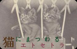 猫にまつわるエトセトラ