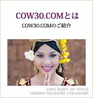COW30.COMとは
