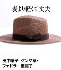 ケンマ草・フェドラー帽子