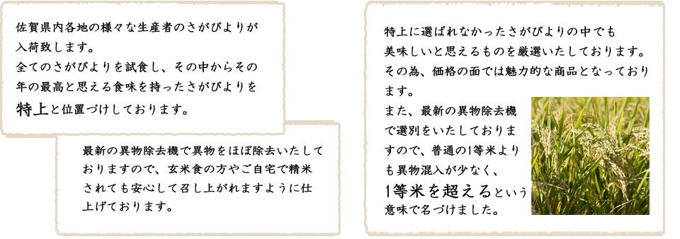 佐賀県内各地の様々な