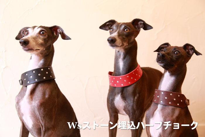 Wsストーン埋込ハーフチョーク - 軽井沢わんストーン
