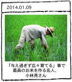 米作り名人レポート 小林亮さん