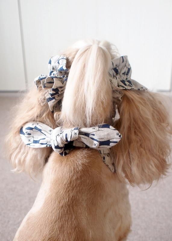 犬用 クールネック 熱中症対策 リボンがある時