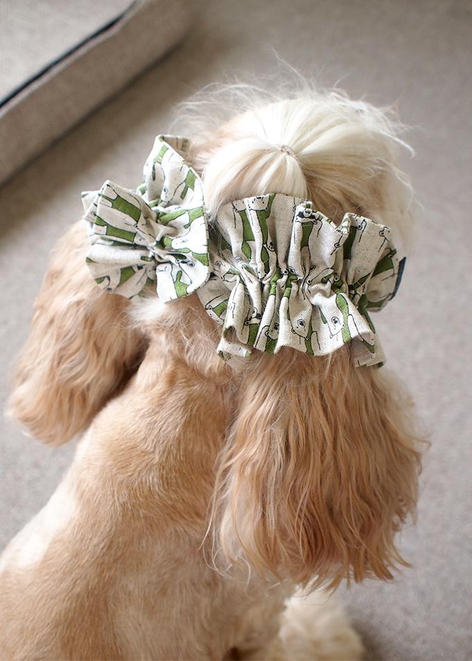 愛犬の耳を彩るイヤーシュシュ 白くま 後ろ