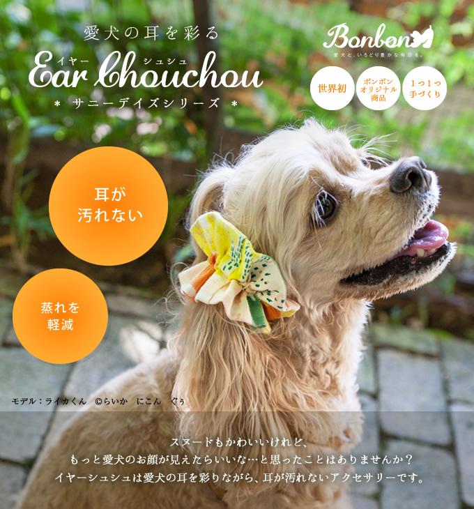 愛犬の耳を彩るイヤーシュシュ サニーデイズ