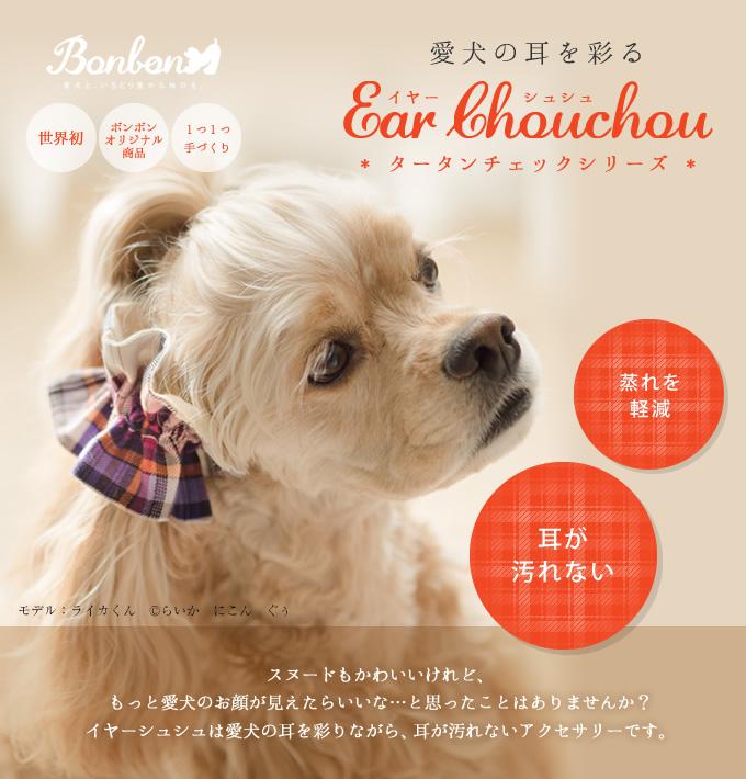 愛犬の耳を彩るイヤーシュシュ タータンチェック