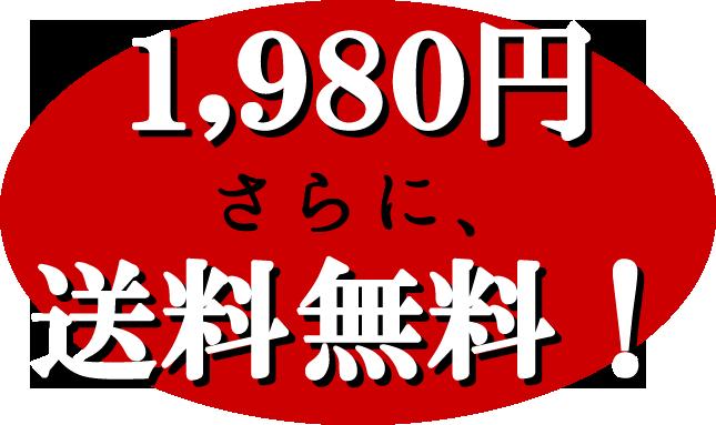 1,980円さらに、送料無料!