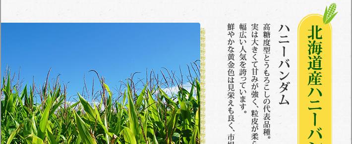 北海道産ハニーバンダムを使用。