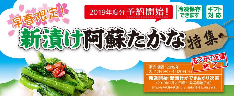 新漬け高菜特集