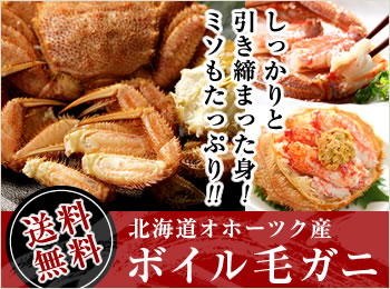 【送料無料】北海道オホーツク産ボイル毛ガニ