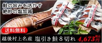 送料無料 越後村上名産 塩引き鮭8切れ 鮭の旨みを活かす絶妙の塩加減