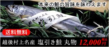 越後村上名産 塩引き鮭 丸物 本来の鮭の旨味を味わえます 送料無料 9,300円(税込)