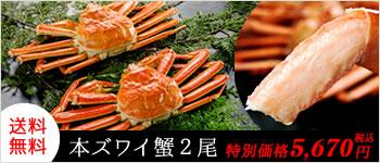 送料無料 本ズワイ蟹 2尾
