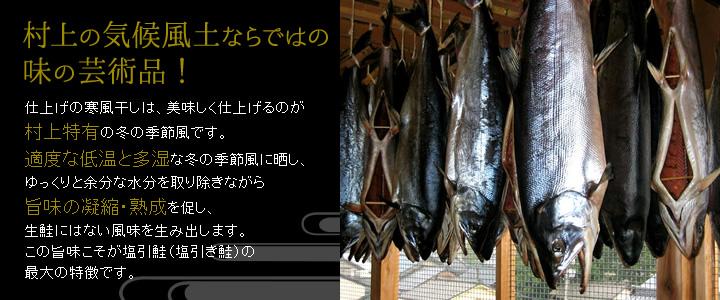 村上の気候風土ならではの味の芸術品!仕上げの寒風干しは、美味しく仕上げるのが村上特有の冬の季節風です。適度な低温と多湿な冬の季節風に晒し、ゆっくりと余分な水分を取り除きながら旨味の凝縮・熟成を促し、生鮭にはない風味を生み出します。この旨味こそが塩引鮭(塩引き鮭)の最大の特徴です。