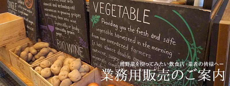 業務用販売のご案内|朝採り!三浦野菜市場