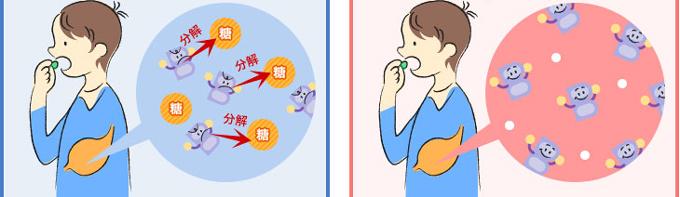 糖衣剤は、糖を分解するのに有効成分を使ってしまう。賦形剤を分解する必要がないのでより多くの有効成分が生き残る。