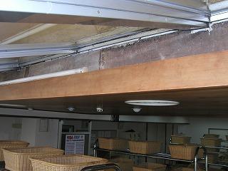 採光用の窓は結露しカビを繁殖させます。