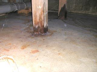床下に溜まった水