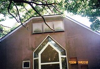 外壁塗料に藻が発生