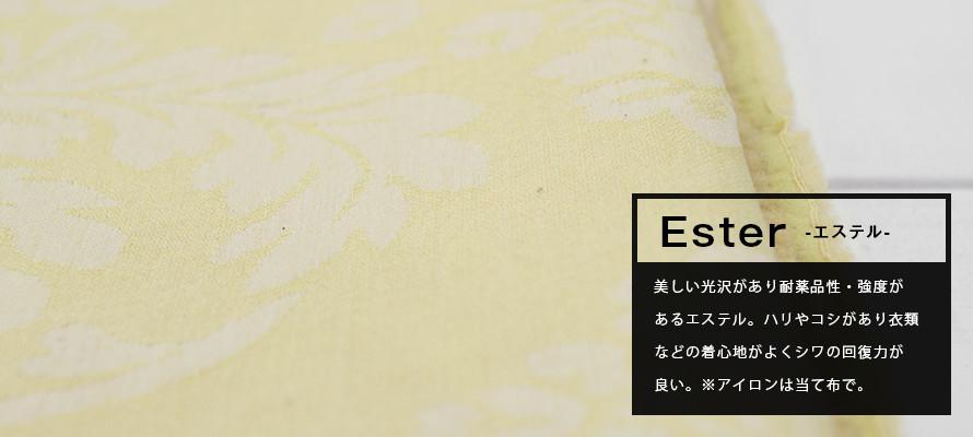 エステルの画像