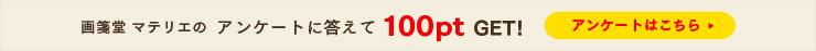 アンケートに答えて100ポイントゲット!