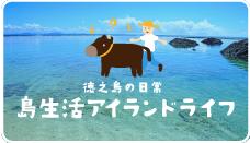 徳之島の日常 アイランドライフ
