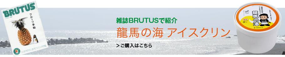 雑誌BRUTUS(ブルータス) で紹介。龍馬の海アイスクリン