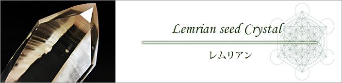 カテゴリーレムリアン