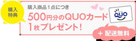購入商品1点につき500円分のQUOカード1枚プレゼント