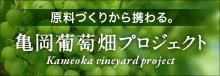 原料づくりから携わる。亀岡葡萄畑プロジェクト