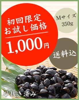 【送料込み】初回限定お試し価格1,000円 Mサイズ350g 砂抜き済