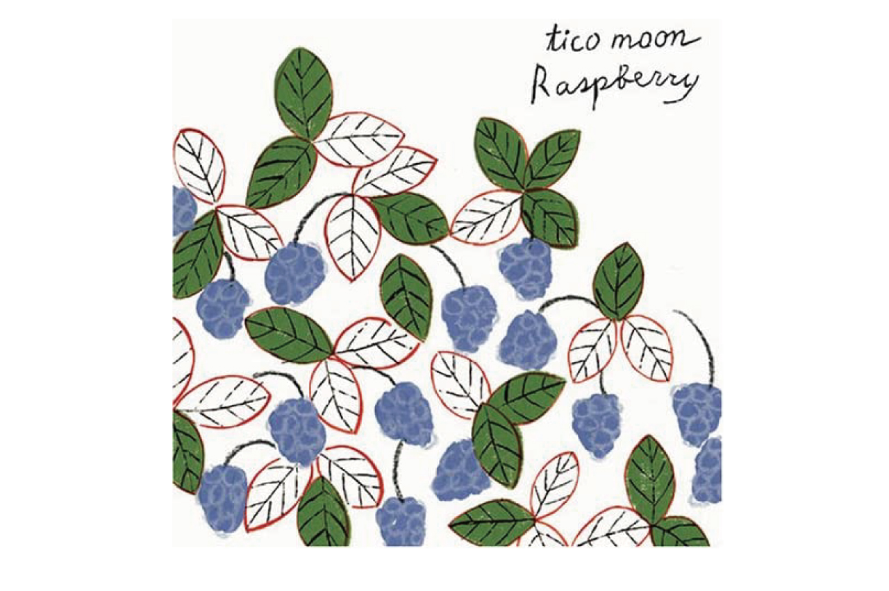 <img class='new_mark_img1' src='https://img.shop-pro.jp/img/new/icons49.gif' style='border:none;display:inline;margin:0px;padding:0px;width:auto;' />【CD】tico moon 『Raspberry』
