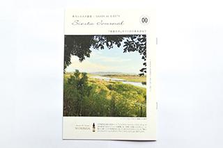シエスタ通信:Vol.00 『奇跡の木』モリンガの森を訪ねて