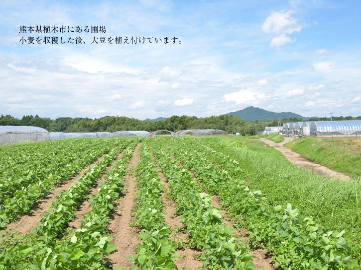 熊本市北区植木町