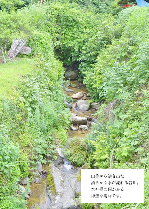 水神様の谷川